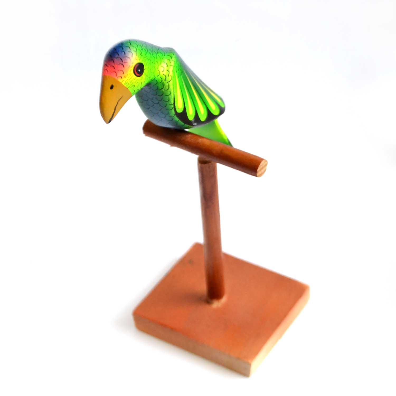 Loro - Parakeet
