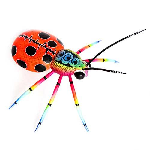 Mariquita - Ladybug